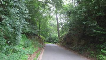 Der Hohlweg in Gspannberg an der Rascher Straße ...