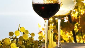 auf ein Gläschen Wein ...
