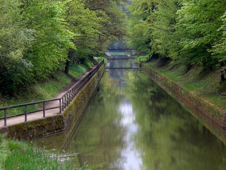 Patenstrecke am Fünf Flüsse Radweg