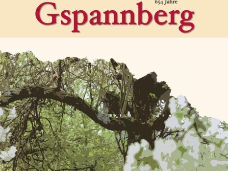 """Von Bienen und warum Gspannberg """"Gspannberg"""" heißt …"""